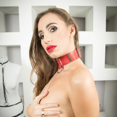 "Collar with leash fetish BDSM ""Servant"""
